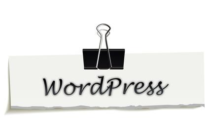 Permalink to WordPress Celebrates 10 Years