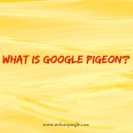 Google Pigeon | WebsiteJungle.com