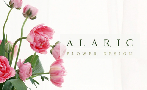 alaric1-488x300
